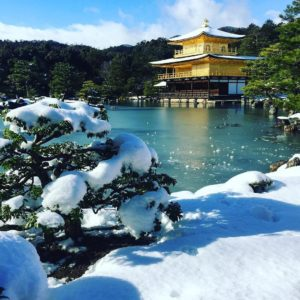 Its snowing in Kyoto! Were absolutely in awe at thehellip