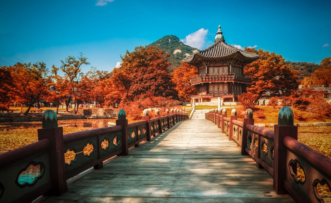 The Ultimate Guide To Autumn Foliage In Seoul Travel